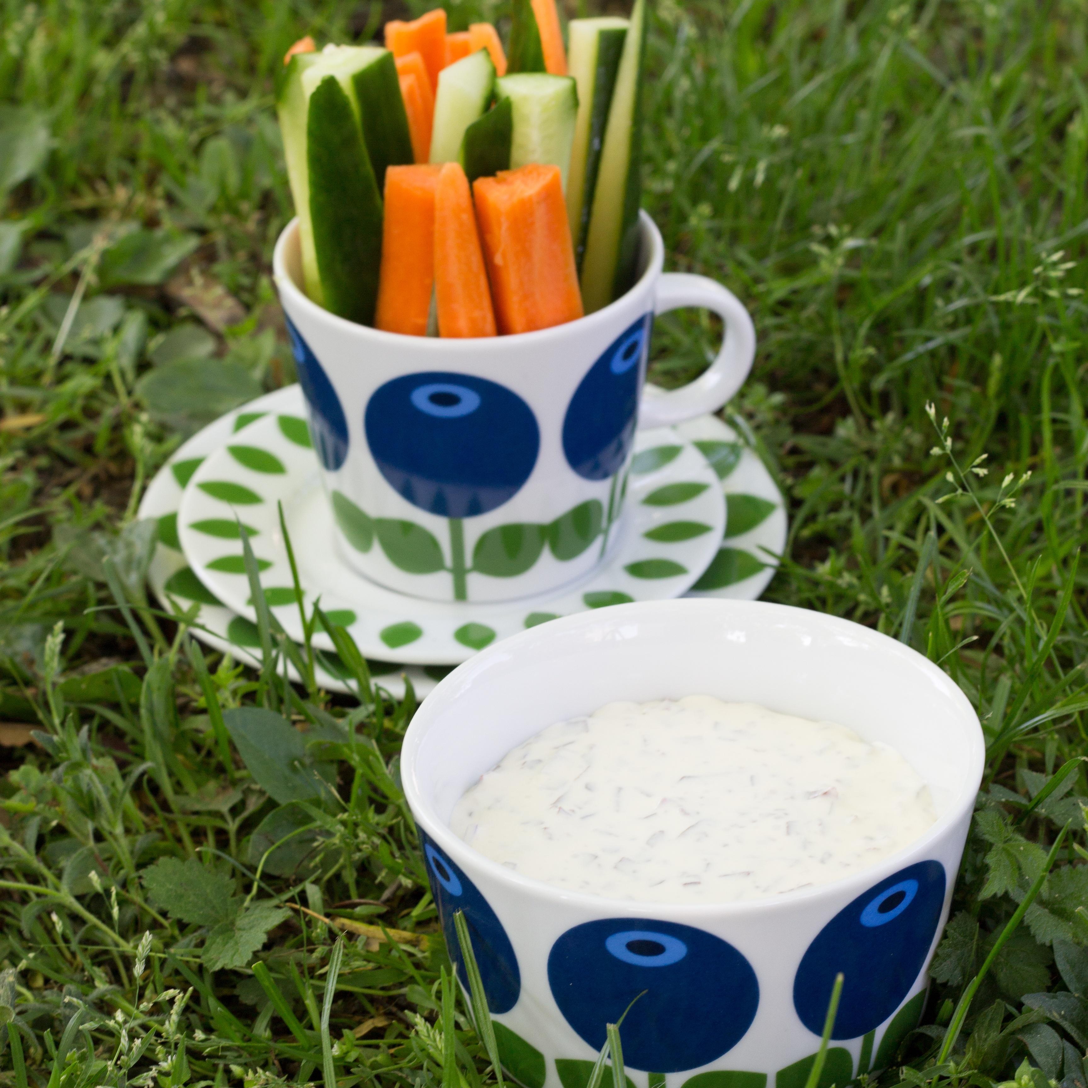 Picknick med grönsaksdipp20160708